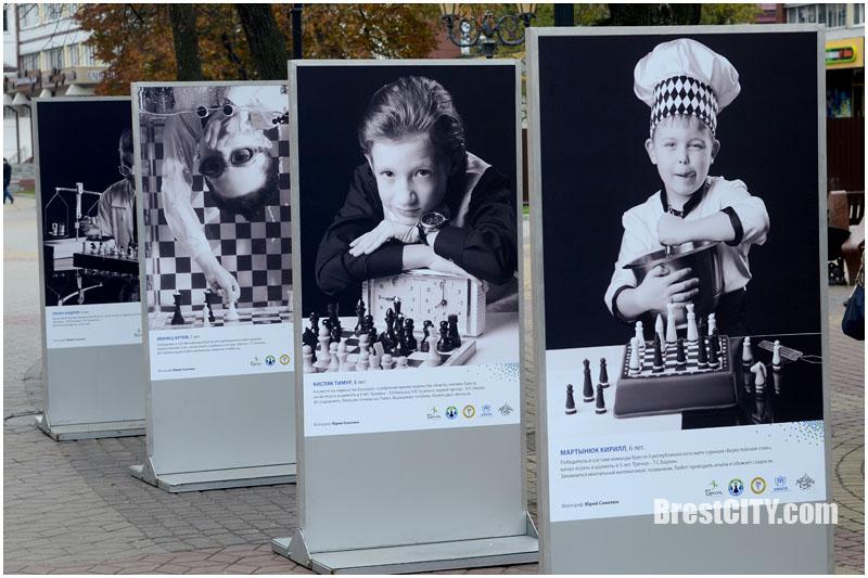 Шахматная выставка в Бресте