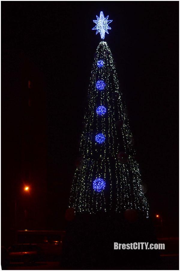 Елка на ул.Суворова в Бресте