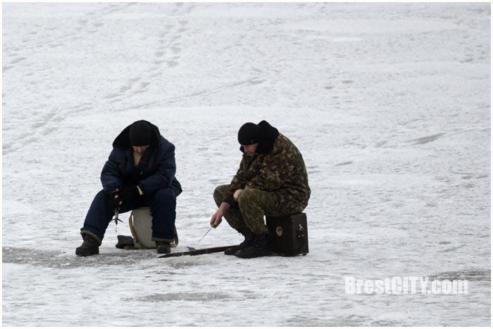 Рыбаки на льду. Фото BrestCITY.com