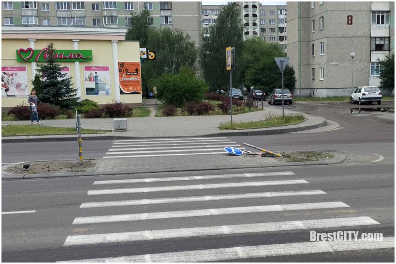 Островок безопасности в Бресте