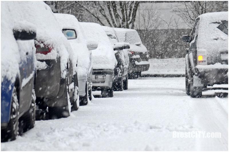 31 декабря в Бресте снег