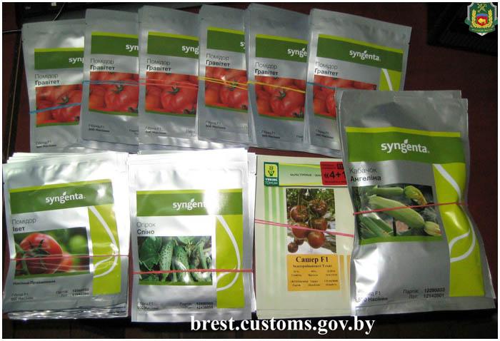 Купить Семена Голландские Через Интернет Магазин