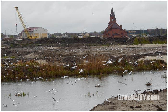 Стойка нового микрорайона на Ковалевке в Бресте. Фото BrestCITY.com
