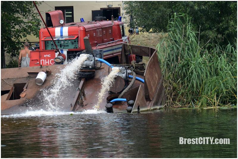 В Бресте подняли из воды за