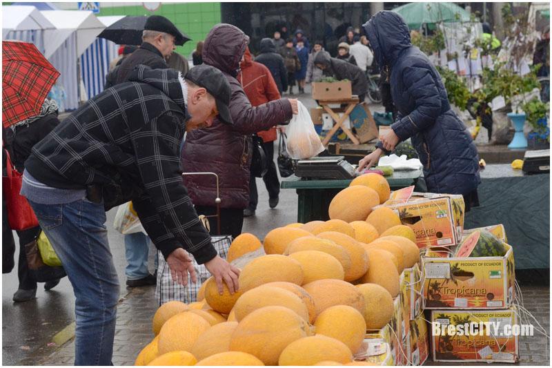 Осенние ярмарки в Бресте