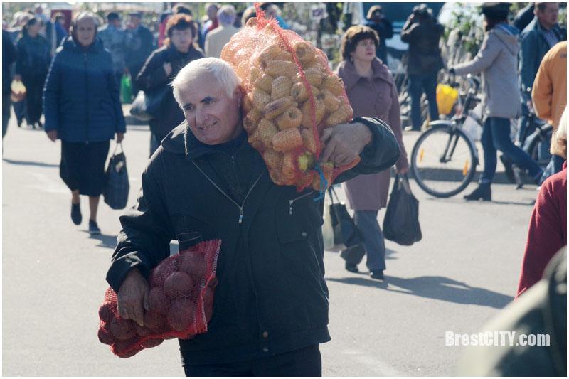 Осеняя ярмарка в Бресте