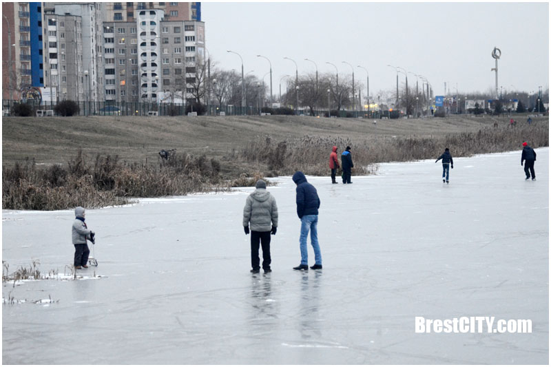 Брестчане на прогулке на льду