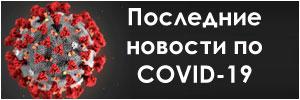 Коронавирус Брест